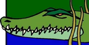 Image of crocodile
